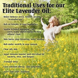 lavender essential oil5